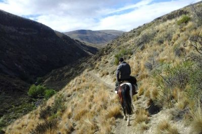 Excursion Caballo Hostel Calafate